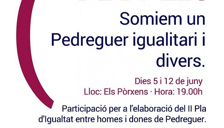 Pedreguer enceta el procés de participació per a l'elaboració del II Pla d'Igualtat