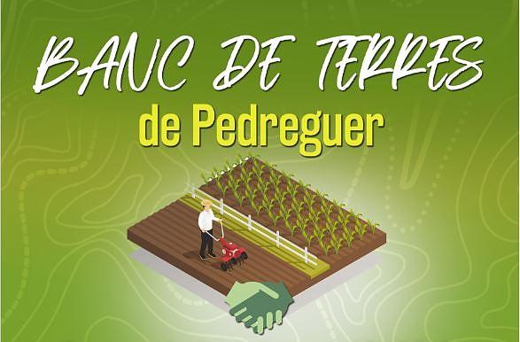 Banc de Terres de Pedreguer